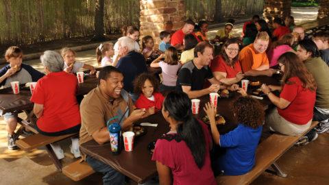 Group enjoying lunch at picnic pavilion
