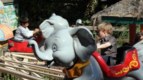 tavas_elephant_parade_2